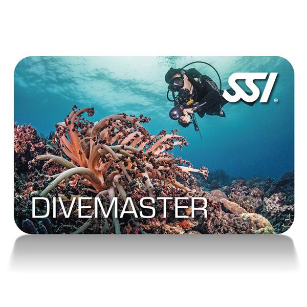 dive-master-600x600